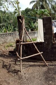 African ladder